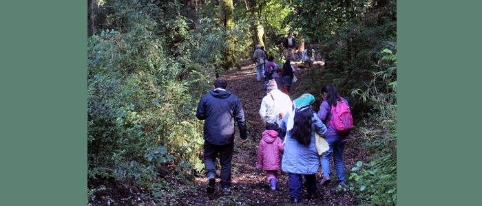 Visita Bosque 3
