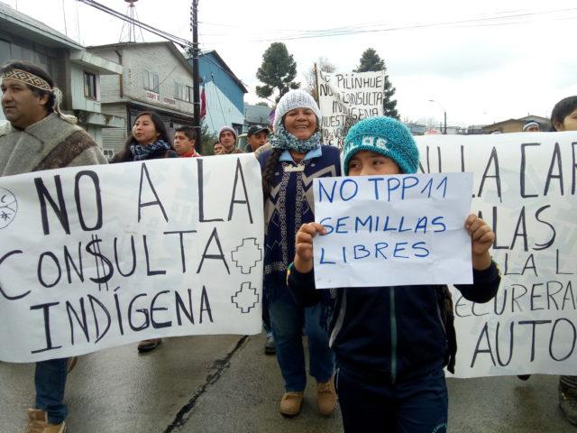 Panguipulli y Coñaripe: Comunidades mapuche rechazan la consulta indígena